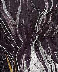 """Nevadan Orogeny"" by Ann Johnston"